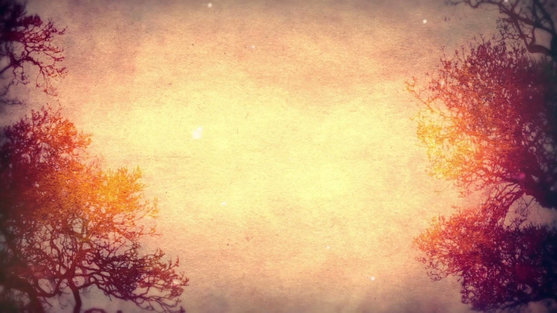 Free Fall Widescreen Wallpaper Nice Pictures For Background 61 Images