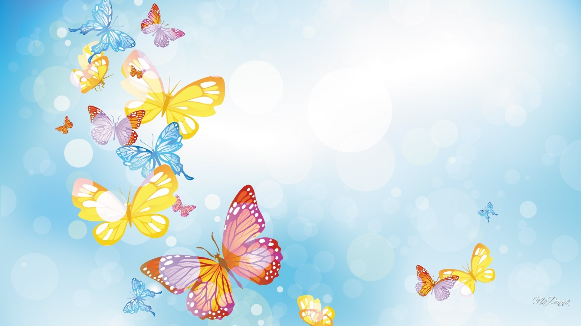 Hd Wallpapers Butterflies Widescreen Butterfly Wallpaper For Computer 60 Images