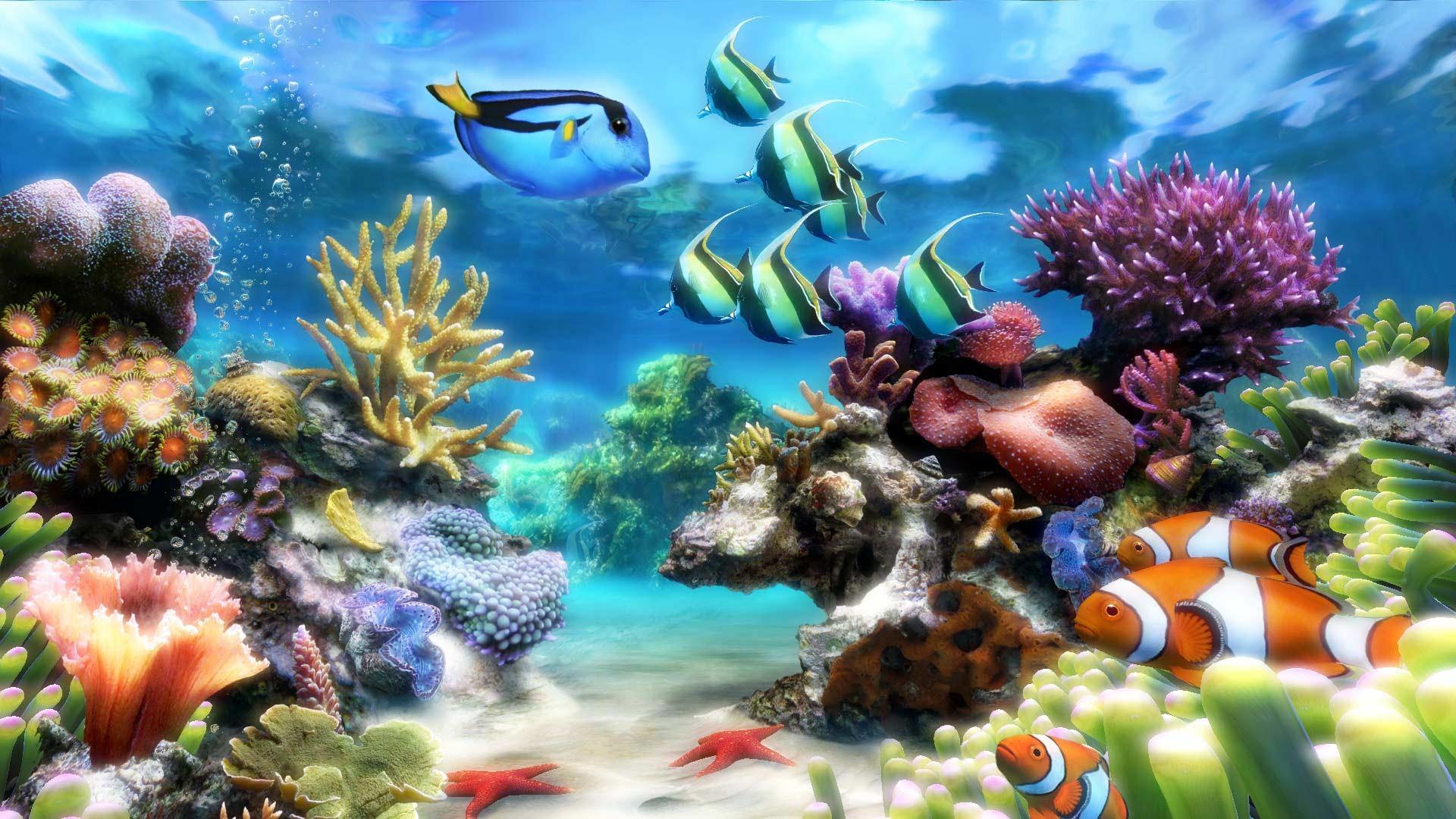 Animated Aquarium Wallpaper For Windows 8 Moving Aquarium Wallpaper 49 Images