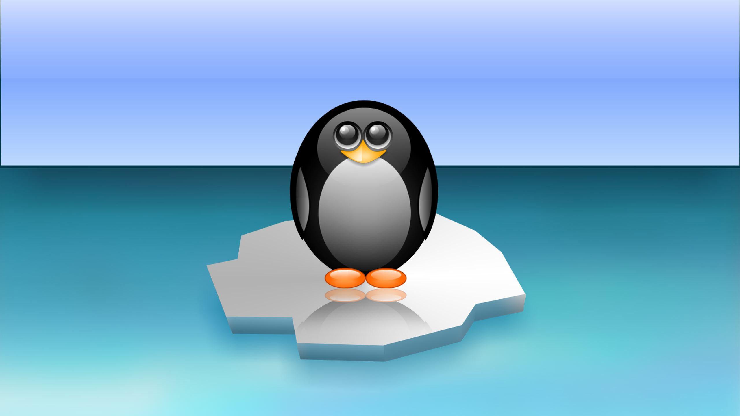 Linux Mint Animated Wallpaper Linux Tux Wallpaper 59 Images