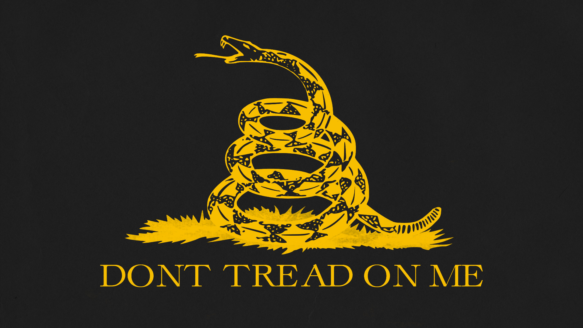 2560x1440 Wallpapers Hd Bible Quotes Dont Tread On Me Wallpaper 74 Images