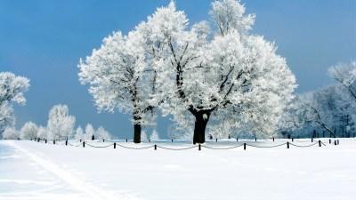 Winter Scene Wallpaper (51+ images)