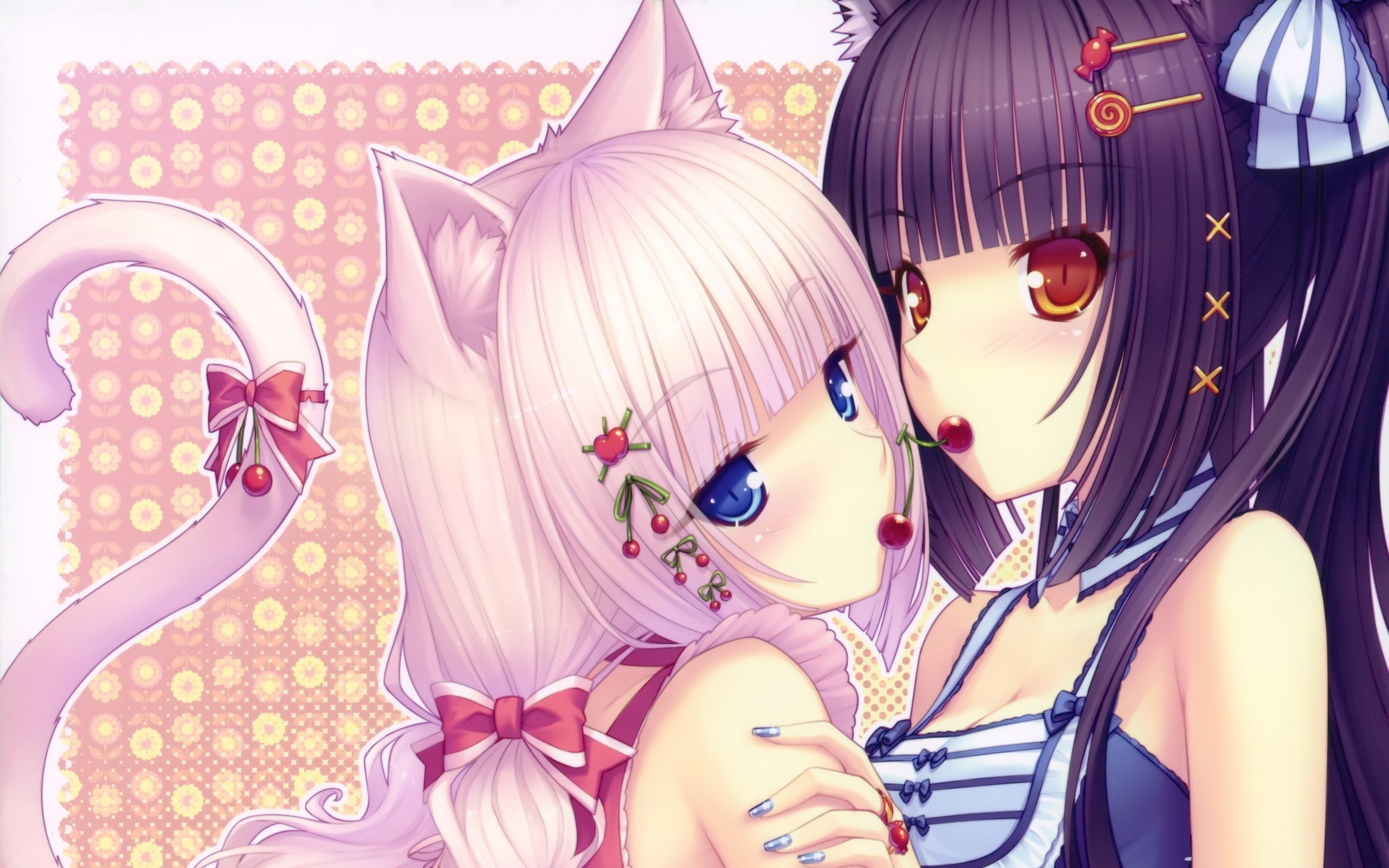 Cute Cat Wallpapers High Resolution Anime Neko Wallpapers 61 Images