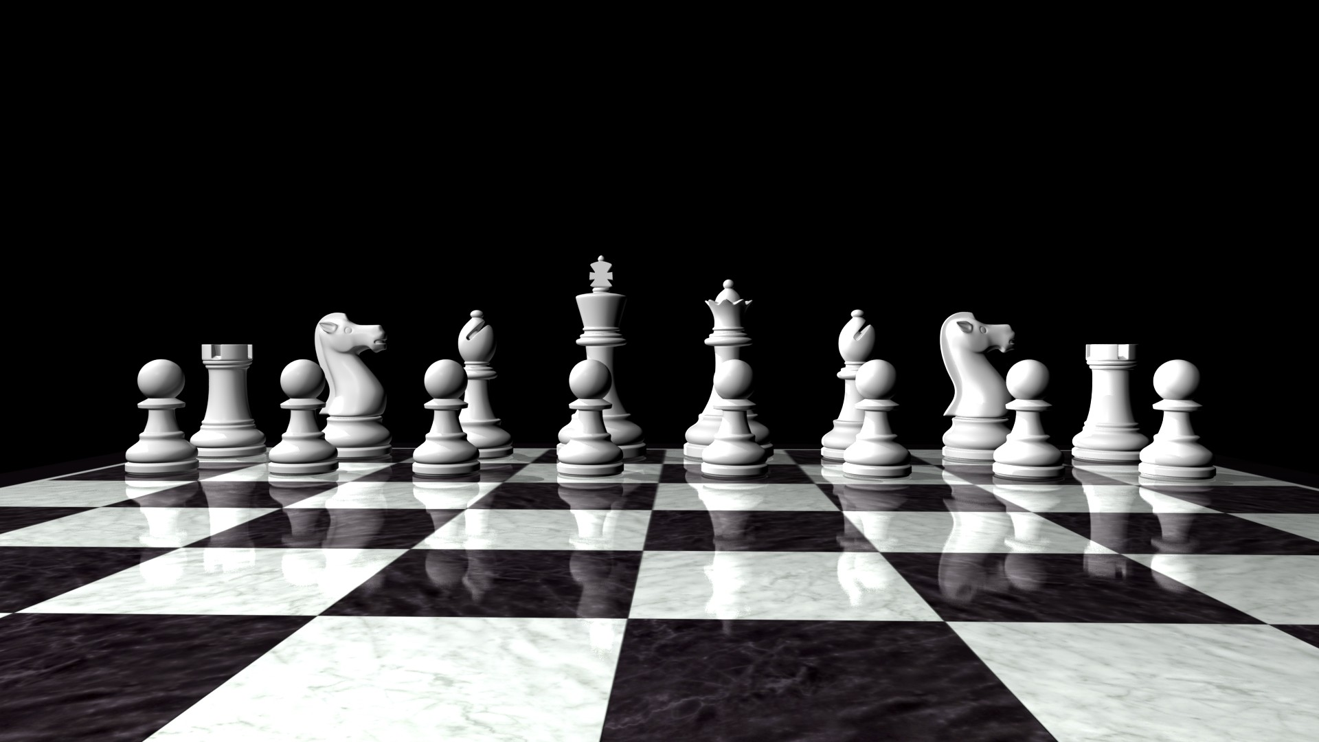 3d Cat Wallpapers Download Chess Wallpaper 76 Images