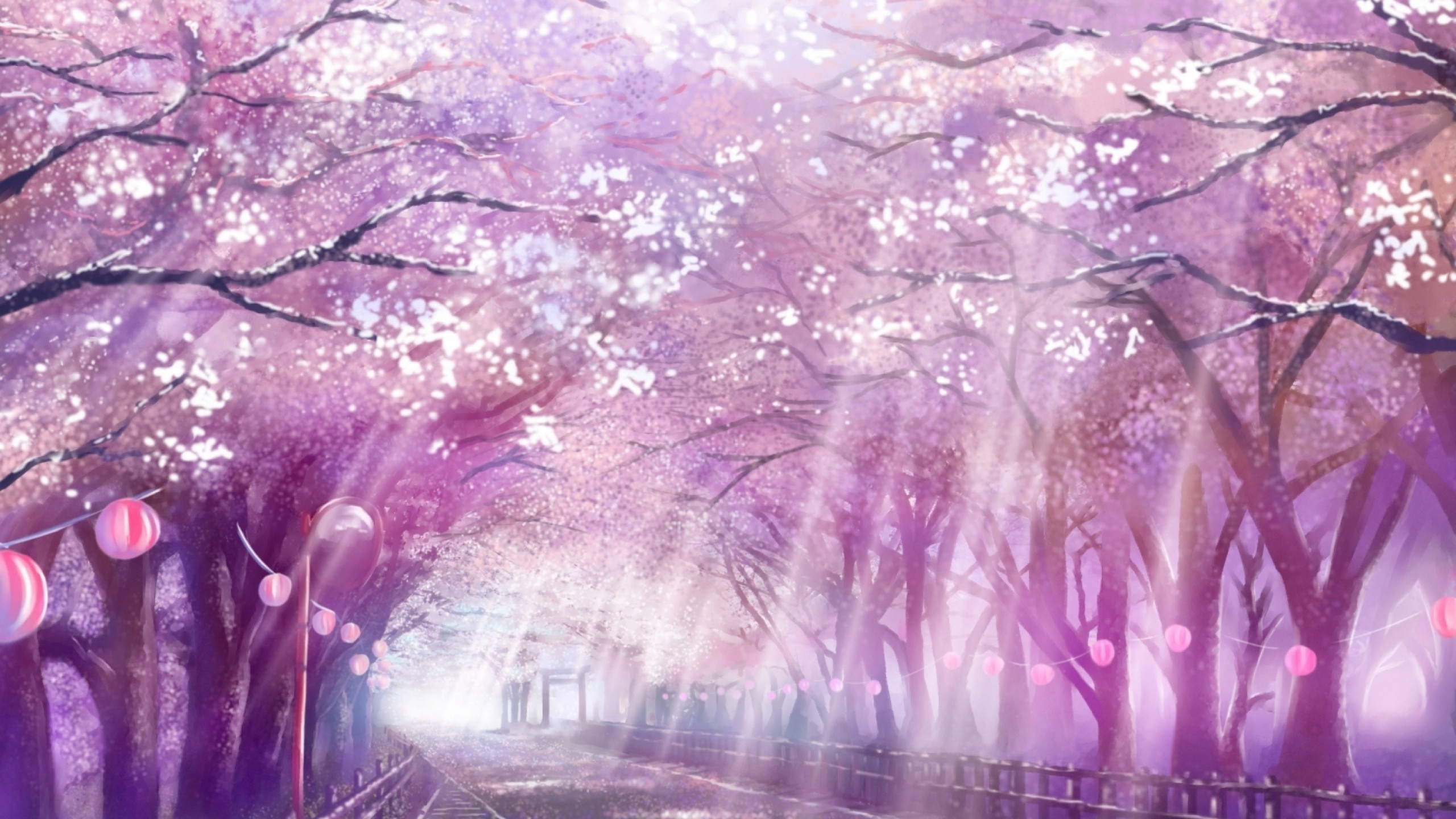 Wallpapers Cherry Blossom Anime Cherry Blossom Wallpaper 72 Images
