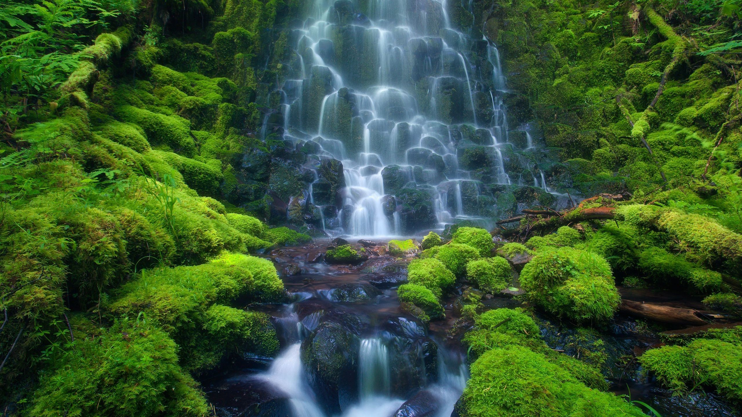 Animated Wallpapers Free Download For Xp Animated Waterfall Wallpaper With Sound 46 Images