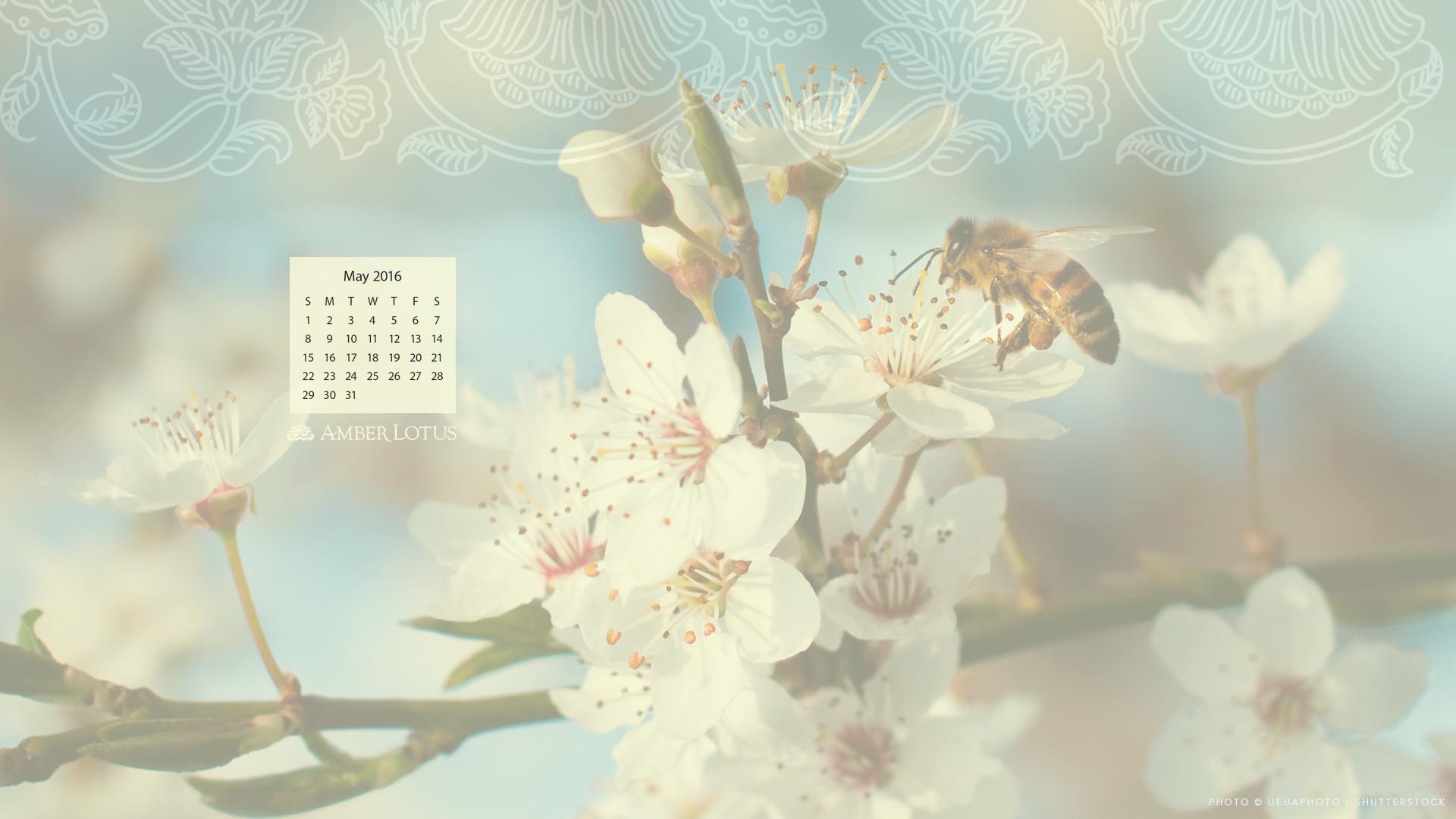 March 2018 Cute Full Screen Desktop Wallpapers May 2018 Desktop Calendar Wallpaper 60 Images