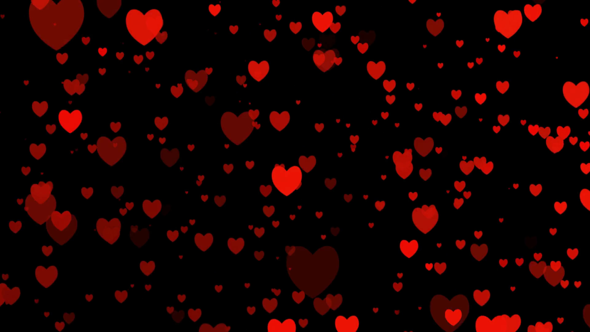 Rose Petals Falling Wallpaper Transparent Gif Red Heart With Black Background 39 Images