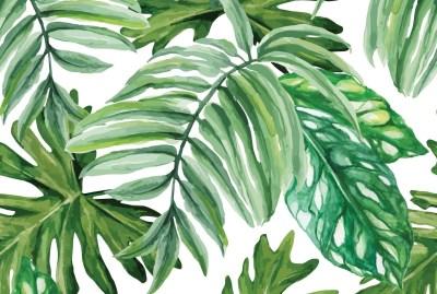 Tropical Palm Leaf Wallpaper (24+ images)
