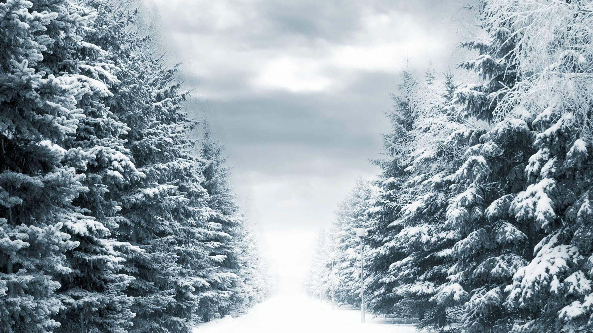 Storm City Wallpaper Hd 3d Snowy Backgrounds 54 Images