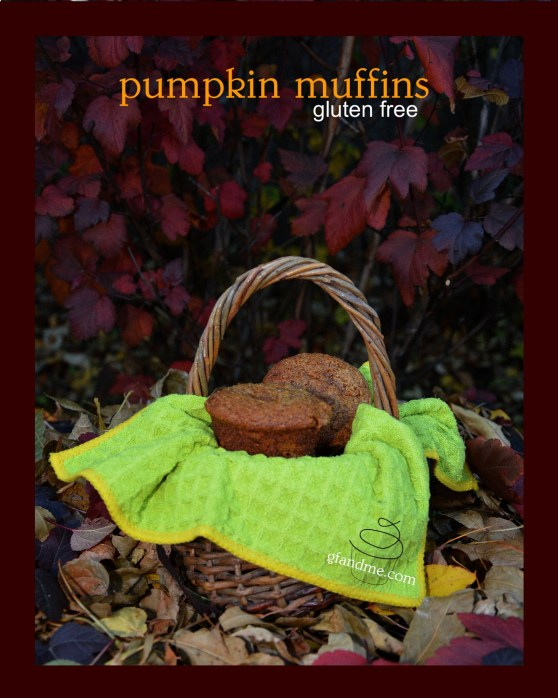 pumpkin muffins. gfandme