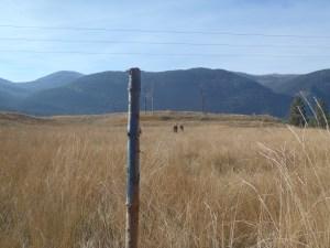 Gilpin Grasslands