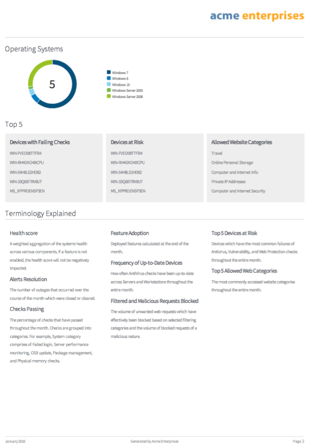 executive summary report example