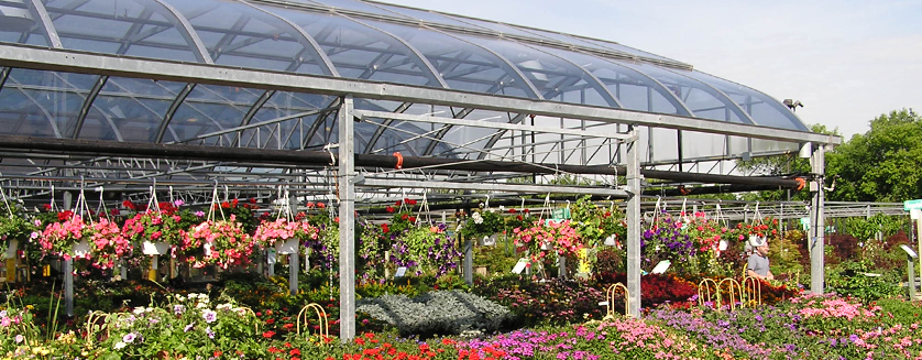 10 Greenhouse Design Mistakes To Avoid For Garden Centers
