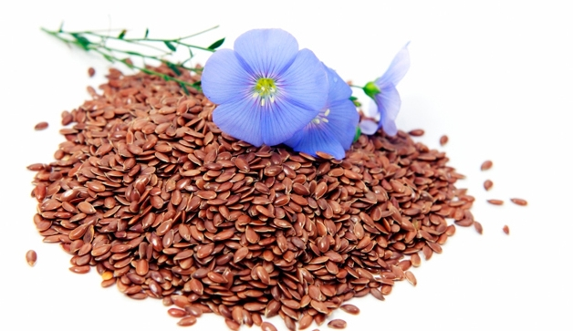 len semena