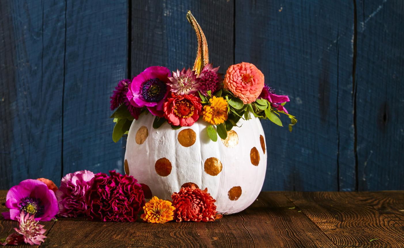 Pumpkin stems for crafts -  Pumpkin Stems For Crafts 13 Download