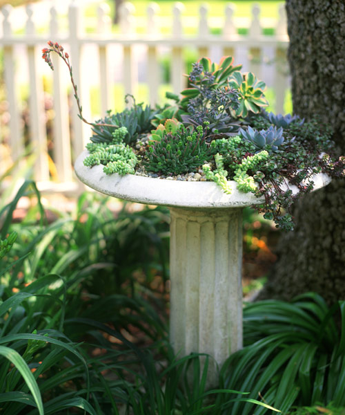 Garden Design Garden Design with Container Gardens on Pinterest - container garden design ideas