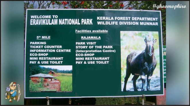 Eravikulam National Park