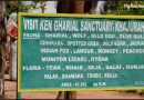 Ken Ghariyal Sanctuary – a place known for the most amazing Crococodilians!!
