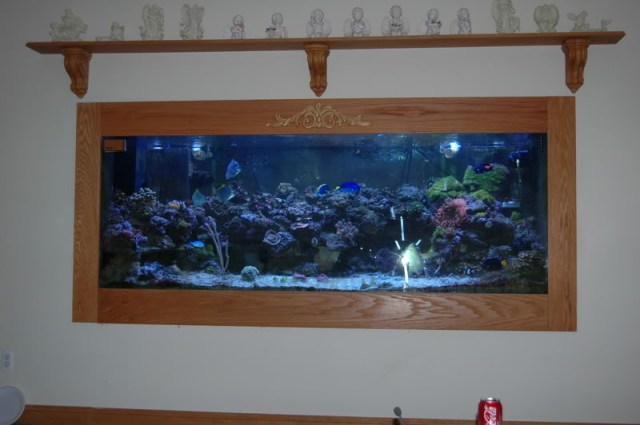 /2012/06/20/550 gal aquarium with stand and filter 999 monterey park