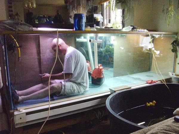 8 foot aquarium for sale ft fish tank aquarium with weir for Craigslist fish tanks