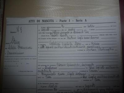 Giant Image Management - Diary of Silviamatrilineally Addini based on birth in Pisa, Italy Jus ...