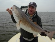 Enrico's August Redfish