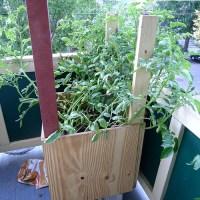 patio potatoes | Giardinaggio Irregolare