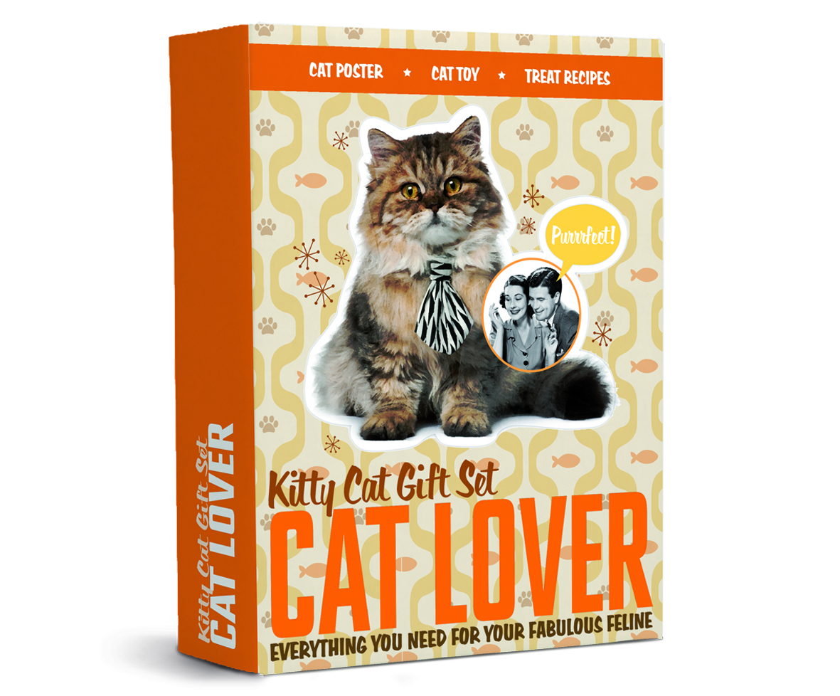 Unique Cat Lover Gift Kitty Cat Gift Set Cat Lover Unique Creative