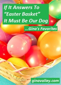 "Humor Funny Humorous Family Life Love Laugh Laughter Parenting Mom Moms Dad Dads Parenting Child Kid Kids Children Son Sons Daughter Daughters Brother Brothers Sister Sisters Grandparent Grandma Grandpa Grandparents Grandfather Grandmother Parenting Gina Valley If It Answers To ""Easter Basket"" It Must Be Our Dog...Gina's Favorites Pets Dumb"
