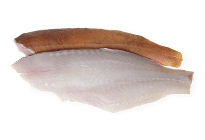 Redfish Fillets