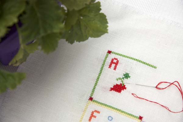 Mid Winter and the Letter A cross stitch