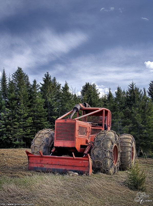 20070517131409_timber_hdr.jpg