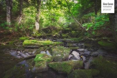 Petit ruisseau à travers les rochers