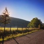 Rayons de soleil sur la route II
