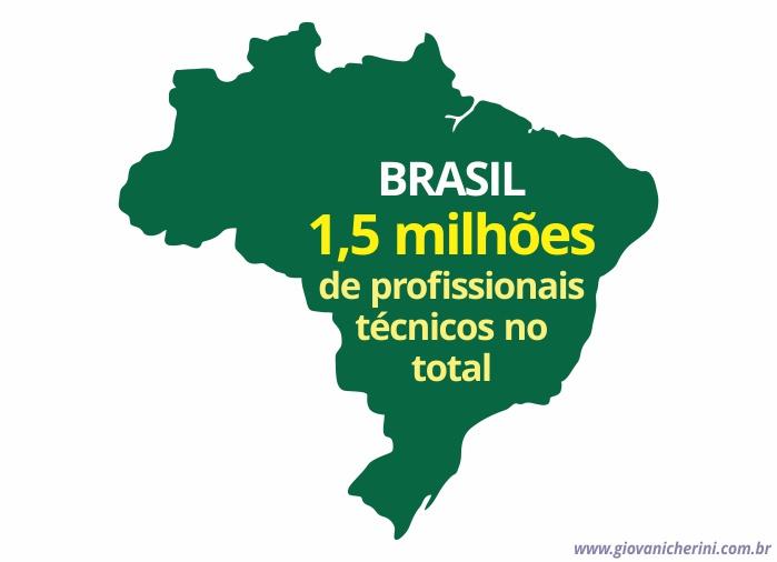giovani cherini numero de profissionais tecnicos no brasil