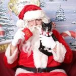 驚き!!日本と全く違う!クリスマスプレゼントの常識。本場アメリカの場合♪