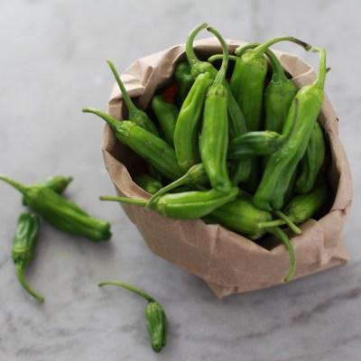crispy shishito peppers