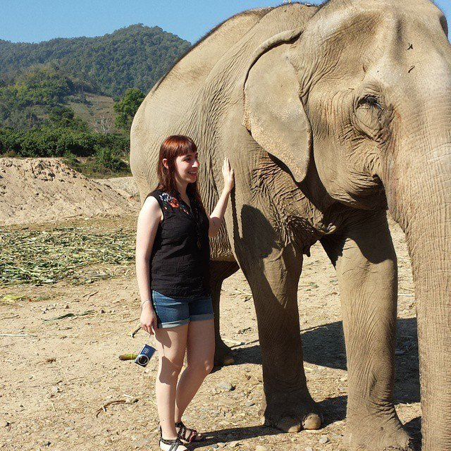 Me with Elephant in Chiang Mai, Thailand