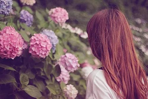 紫陽花(あじさい)を眺める女の子のフリー写真素材(商用可)