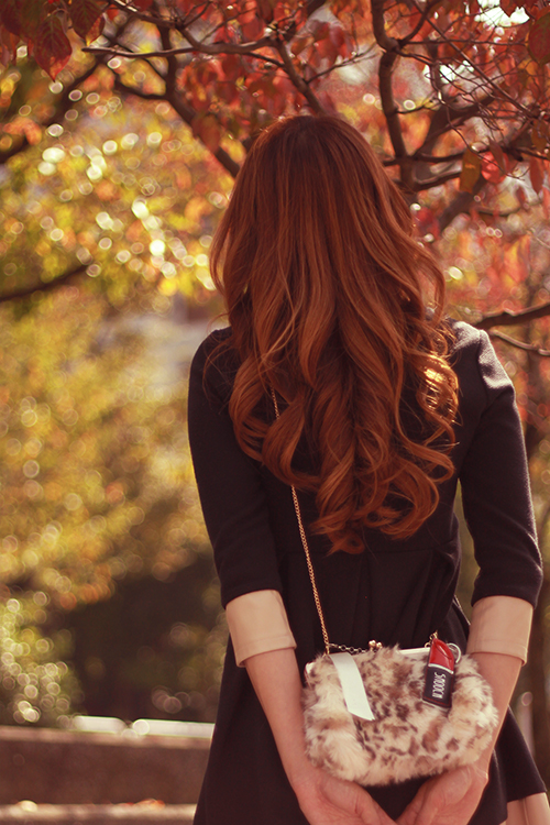 紅葉に見とれている秋の日の女の子のフリー写真素材(商用可)