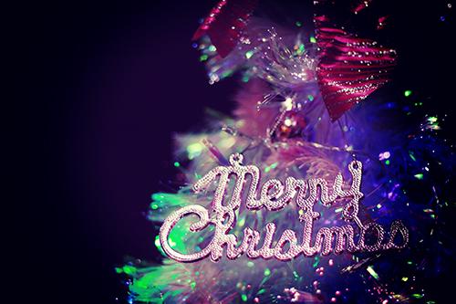 おしゃれガーリーなピンク色のクリスマスツリーのフリー写真素材(商用可)