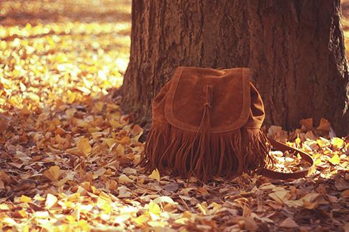 やわらかい木漏れ日の中に置かれているフリンジリュックのフリー写真素材(商用可)