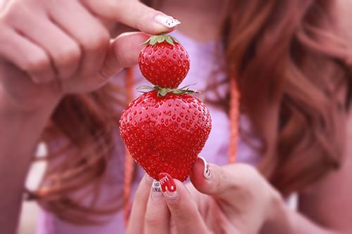 イチゴ狩りで摘んだイチゴを差し出す女の子のフリー写真素材(商用可)
