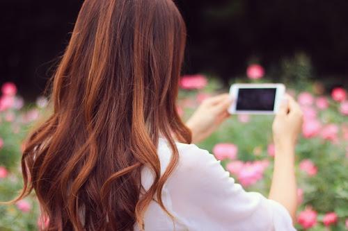 薔薇を見つけてスマホカメラで横向きにじっくり撮影する女の子のフリー写真素材(商用可)