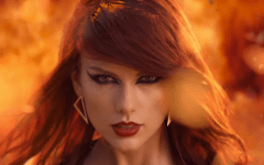 Taylor Swift's army