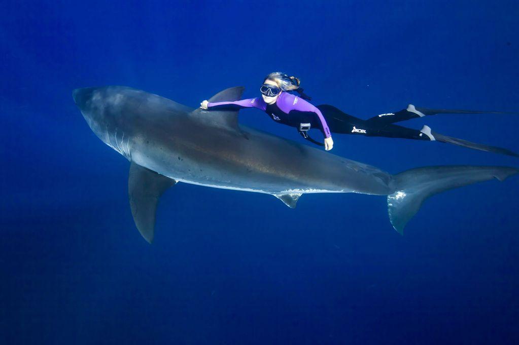 woman-shark