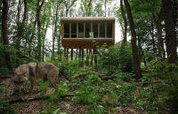Boomhut Tree Inn - Glamping Drverden, Duitsland - Glampings