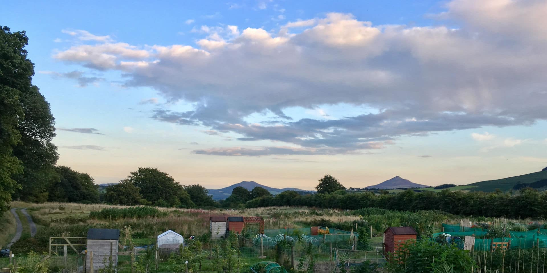 Farmhouse Rules Meatloaf Private Allotments In Dublin Welcome To Glencullen Farm