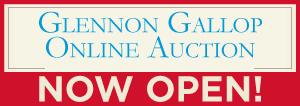 Auction-Page-Button